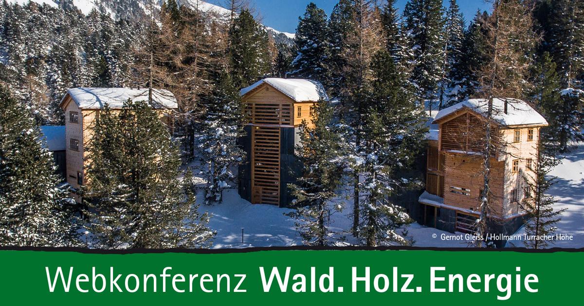2021 06 09 wald holz energie Webkonferenz 1200 x 630 I